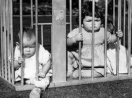 Клітка для дітей, або як вигуляти нащадка?